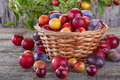 Sloes and plums Royalty Free Stock Photo