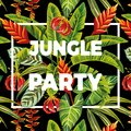 Slogan jungle party flowers and leaves Royalty Free Stock Photo
