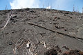 Slope of volcano krakatau in indonesia Stock Photo