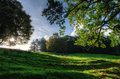 Sloping meadow with overhanging trees view of a on a sunny day Stock Photos