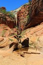 Slot Canyon along Observation Point Trail, Zion National Park, Utah, USA Royalty Free Stock Photo