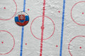 Slovak hockey puck on the site
