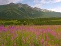 Slovak Tatras