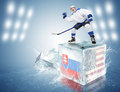 Slovakia - USA game. Spunky hockey player on ice cube