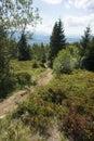 Slovakian mountains - Cheb Mala Fatra
