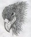 Sly eagle Royalty Free Stock Photo