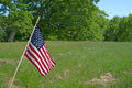 Small American Flag In Meadow Royalty Free Stock Photography
