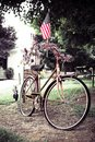 American Flag on old bike Royalty Free Stock Photo