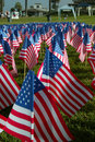 Small American Flags in the ground Royalty Free Stock Images