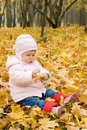 Small baby playing with yellow maple leafs Stock Photos