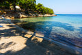 Small beach shaded by trees beautiful landscape of Royalty Free Stock Photo