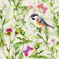 Small bird, spring meadow grass, flowers, butterflies. Repeating pattern. Watercolor