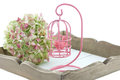Small birdcage on a serving tray isolated on white pink with hydrangea flower Stock Photography