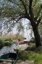 Small boats at Lake Balaton Royalty Free Stock Photo