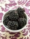 Small bowl of blackberries Stock Image