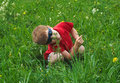 Small boy on meadow Royalty Free Stock Photo