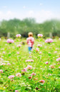 Small boy playing on a meadow Royalty Free Stock Photo