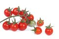 Small branch of ripe cherry tomatoes on a white Stock Photo