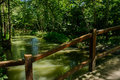 Small bridge over rivulet through woods in sunny summer the chengdu china Royalty Free Stock Photo