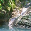 Small brook feeding a lake with stagnant water among southern jungle Royalty Free Stock Photo