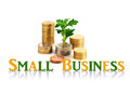 Small business concept palnt and coins isolated over white Stock Photos