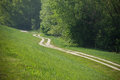 Small bypath next to the forest little walkaway lining border Stock Photos