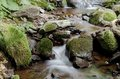 Small cascade on the mountain stream Royalty Free Stock Images