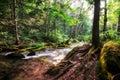 Small cascading creek waterfall in a taken in biei japan Stock Photo