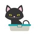 Small cat sitting grooming pet bathtub Royalty Free Stock Photo