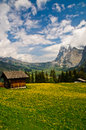 Small Chalet in flower meadow, Grindelwald Stock Photography