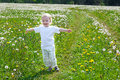 Small child the boy plays on a summer meadow Royalty Free Stock Photo