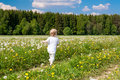 Small child  boy plays on a summer meadow Royalty Free Stock Photo