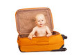 The small child in suitcase for long trips with boy inside on white background Stock Images