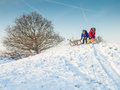 Small children with sledges in winter clothing at the top of a snow covered hill in a winter landscape Royalty Free Stock Photo