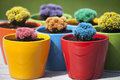 Small colored cacti many colorful in round flowerpots in front of green background Stock Photography