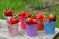 Small colorful toy buckets full of red strawberry several multicolored metal mellow strawberries on old vintage wooden table over Stock Photography