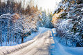 Small country road in winter with sunshine on snowy trees Stock Photography