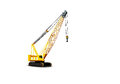 Small crane picture of a Royalty Free Stock Photography