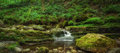 Small creek panorama surrounded by green foliage Royalty Free Stock Photo