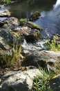 Small creek, river falls over a small waterfall, over stones, into a lake Royalty Free Stock Photo