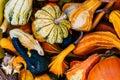 Small decorative pumpkins background