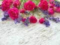 Small Deep Pink Roses And Prov...