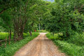 Small dirt road in rural farming village Royalty Free Stock Photo