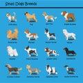 Small Dog Breeds Dog cute Cartoon Design Vector puppy dog Cartoons Design