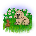 Small dog and mouse a that looks at a little in the grass in front of a hedge in flowering Stock Image