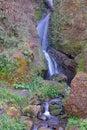 Small Falls near Dugan Falls Washington Royalty Free Stock Photo