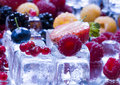 Small fruits among ice cubes Royalty Free Stock Images