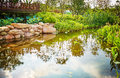 Small pond in backyard landscaping garden Royalty Free Stock Photo
