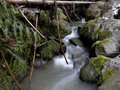 Small mountain stream. Stock Photography