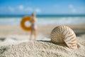 Small nautilus shell  on beach against blue sea Stock Photos